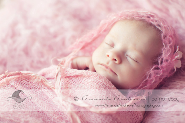 newborn photographer eagle id