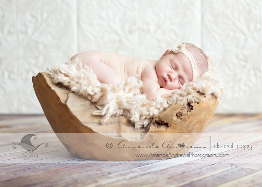 newborn photographer mountain home id