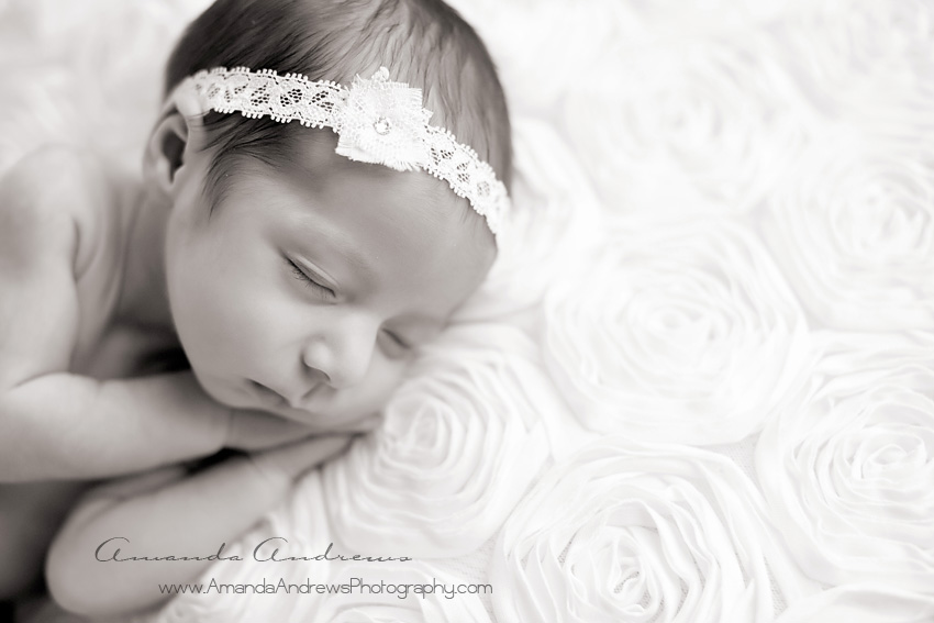 photos of newborn baby girl with big brother