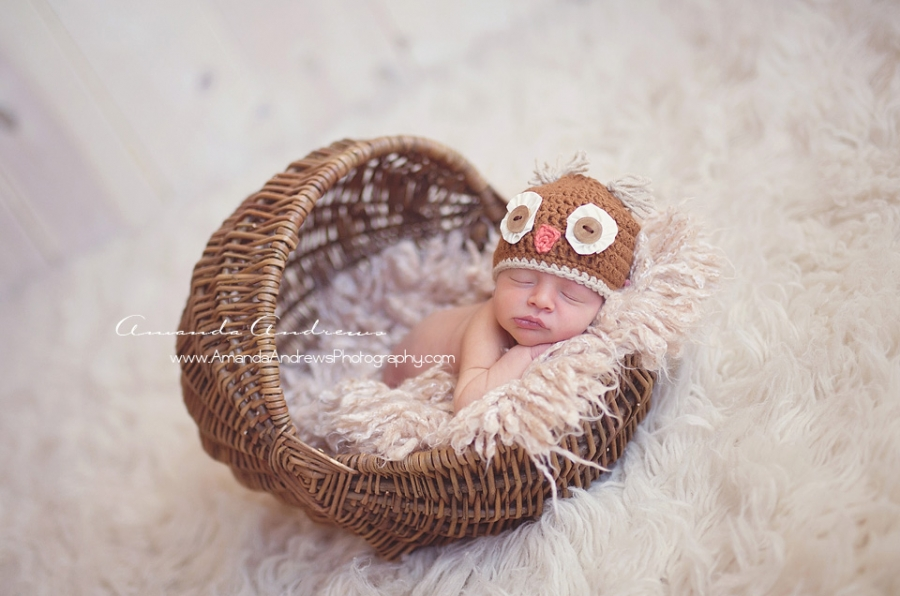 newborn boy in basket with owl hat